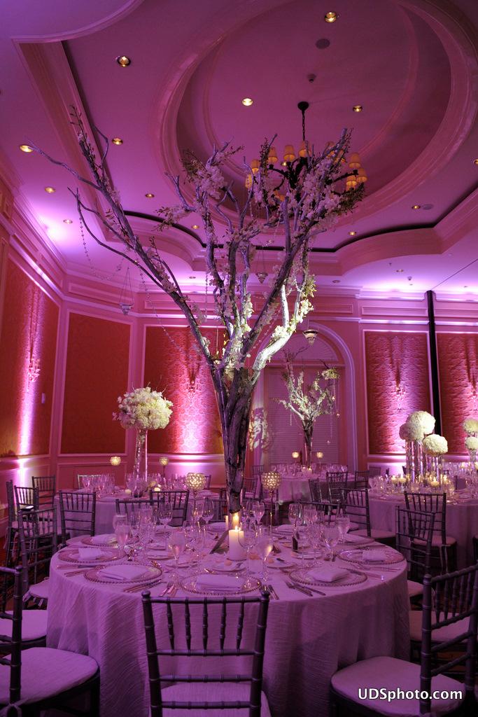 wedding decor photography miami fl. Black Bedroom Furniture Sets. Home Design Ideas